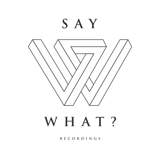 Say What? Recordings